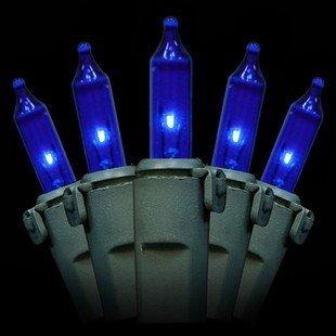 Blue Mini Lights